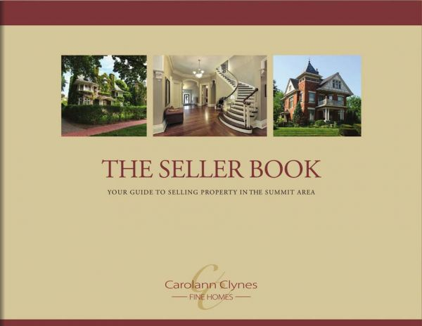 Learn more about The Seller Book